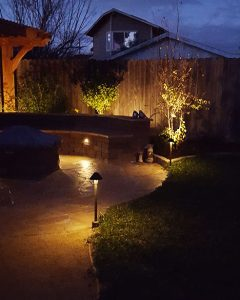 Backyard lighting fixtures highlighting sidewalk and trees.